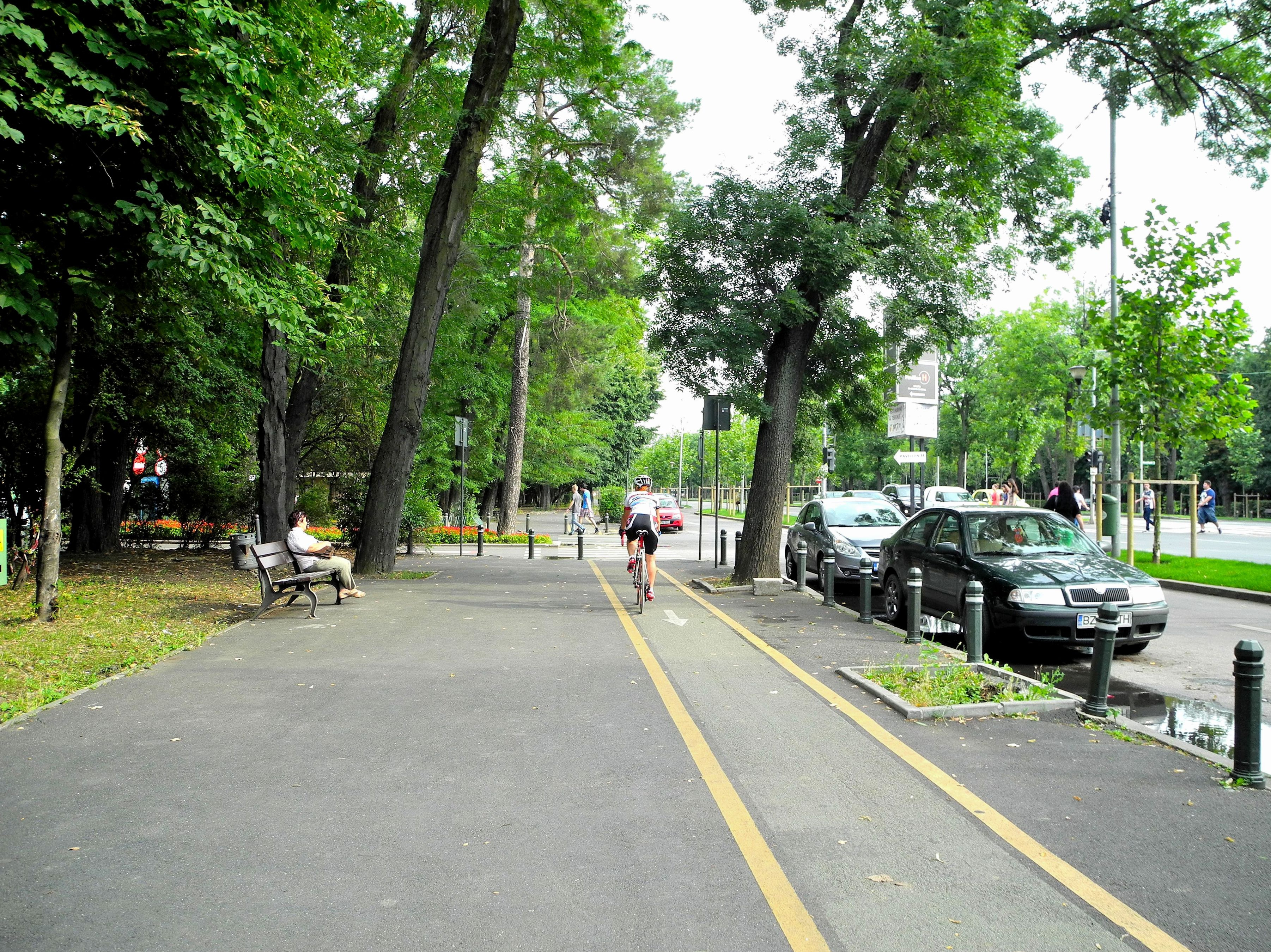 Cycle path around the park Herastrau